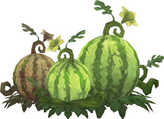 Wintermelons.png